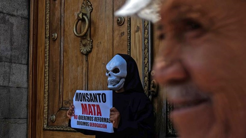 Crisis agroalimentaria y  ley Monsanto
