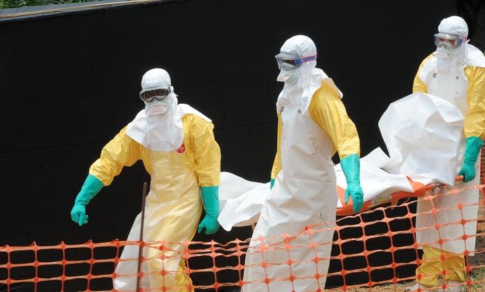 Por qué surge el ébola en Africa: la responsabilidad del FMI y el Banco Mundial